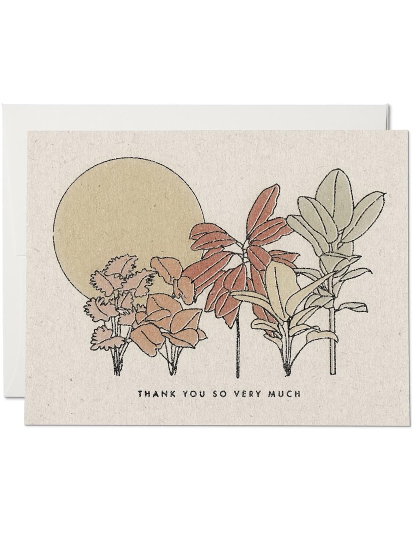 Desert Plants Thank You Greeting Card - RC73