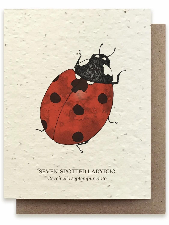Ladybug Greeting Card - Plantable Wildflower Seed Card - BC113