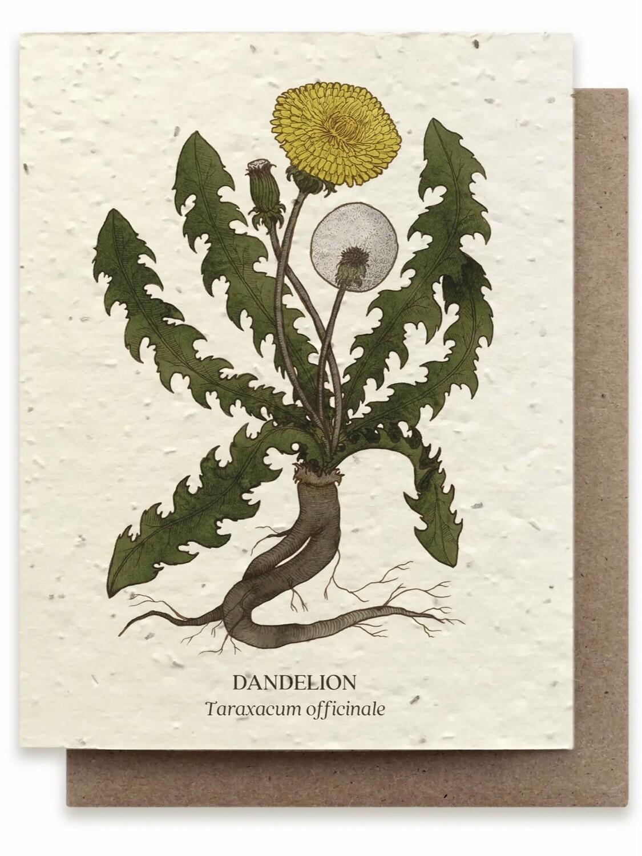 Dandelion Greeting Card - Plantable Wildflower Seed Card - BC116