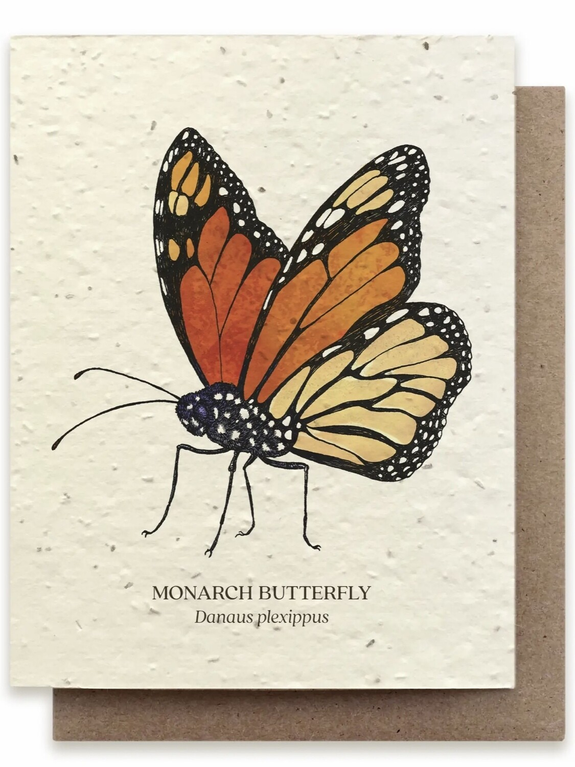 Monarch Butterfly Greeting Card - Plantable Wildflower Card - BC119
