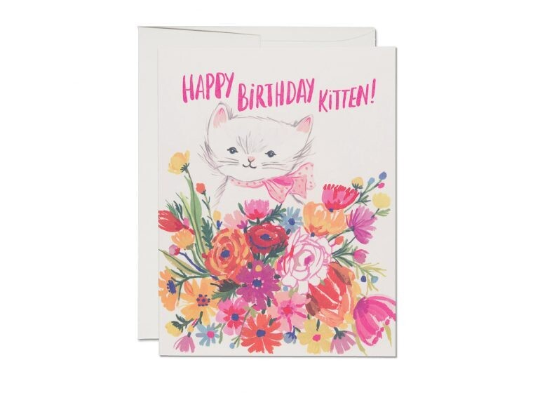 Happy Birthday Kitten Greeting Card - RC84