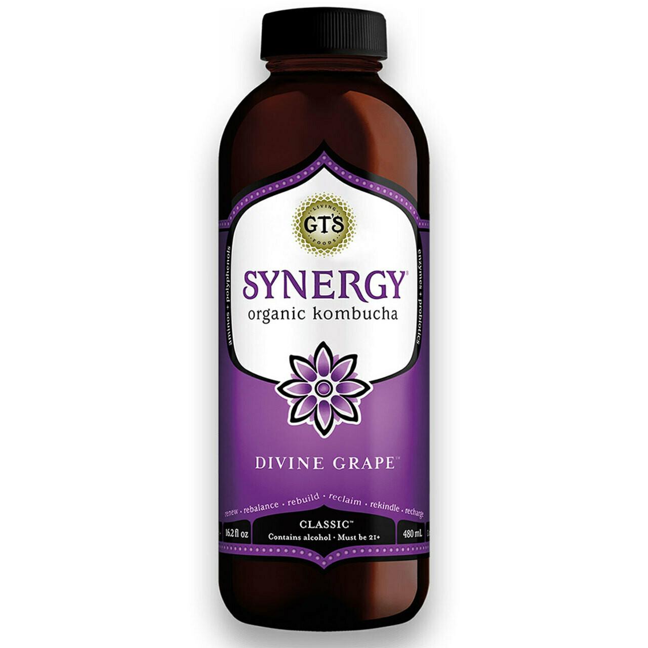 GT's Synergy Divine Grape 2% Alc. Kombucha 16oz.