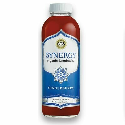 GT's Synergy Kombucha 16oz Gingerberry
