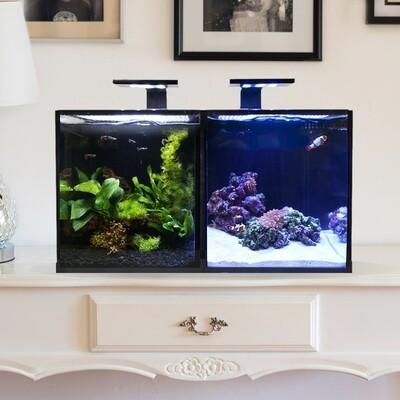 Concept Pro 20 AIO Encore Aquarium [Desktop]