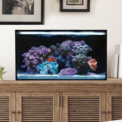 Fusion Pro 20 AIO Aquarium [Desktop]