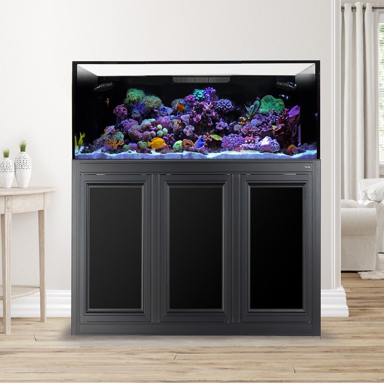 EXT 100 Aquarium w/ APS Stand - Black