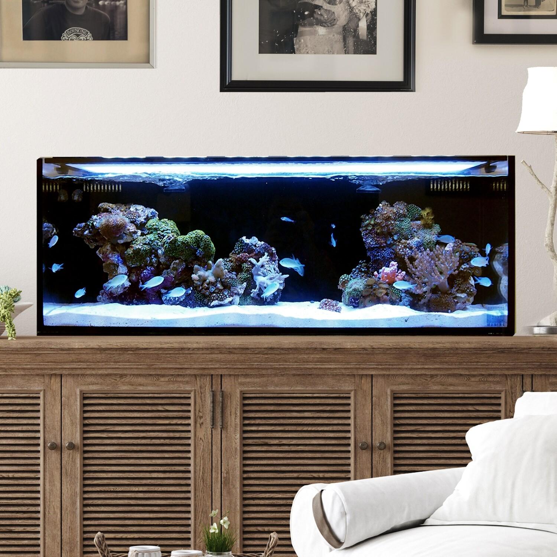Fusion Pro 30 AIO Aquarium [Midsize]