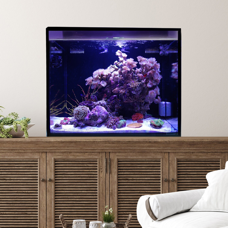 Fusion Pro 40 AIO Aquarium [Midsize]
