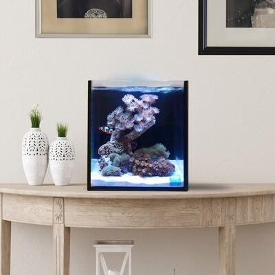Fusion Pro 10 AIO Aquarium [Desktop]