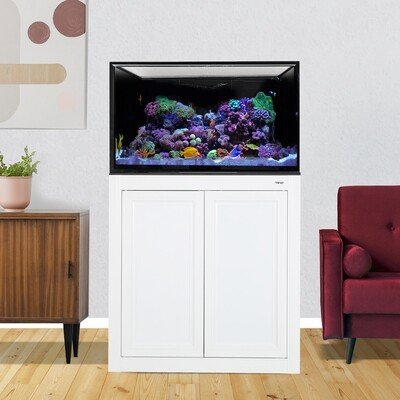 INT 112 Lagoon Aquarium w/ APS Stand - White