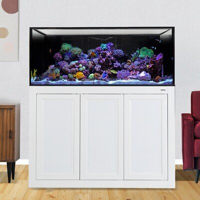 INT 150 Lagoon Aquarium w/ APS Stand - White