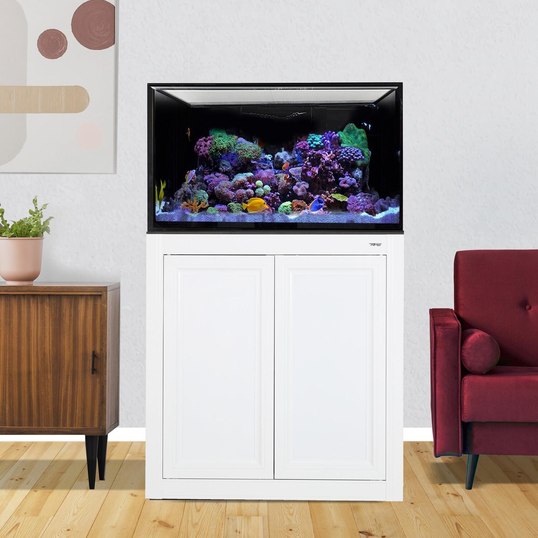 INT 75 Aquarium w/ APS Stand - White
