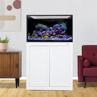 INT 75 Aquarium w/ APS Stand - White