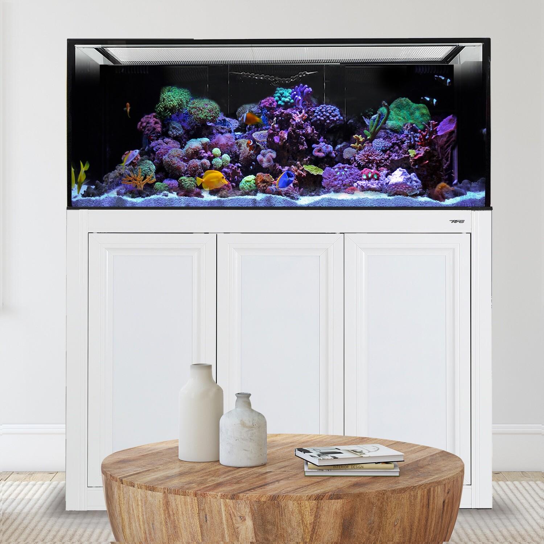 INT 170 Aquarium w/APS Stand - White