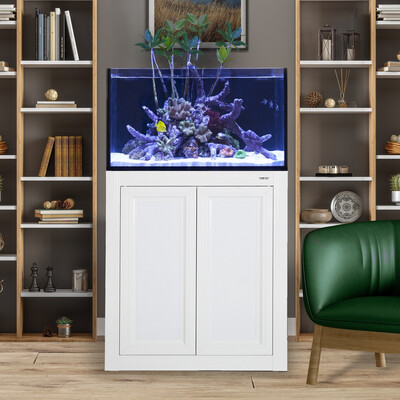 INT 50 Lagoon Aquarium w/ APS Stand - White
