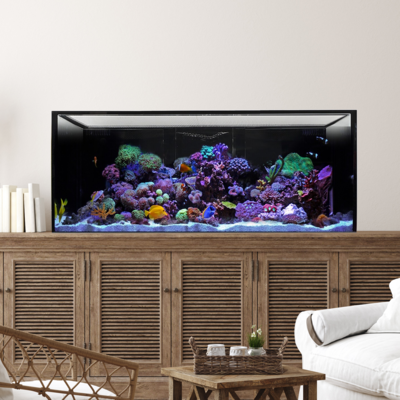 INT 100 Aquarium Tank Only (Excludes APS Stand)