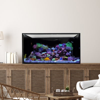 INT 75 Aquarium Tank Only (Excludes APS Stand)