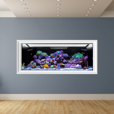 EXT 170 Aquarium Tank Only (Excludes APS Stand)