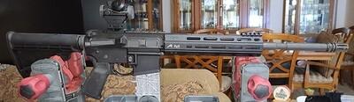 AR15/22