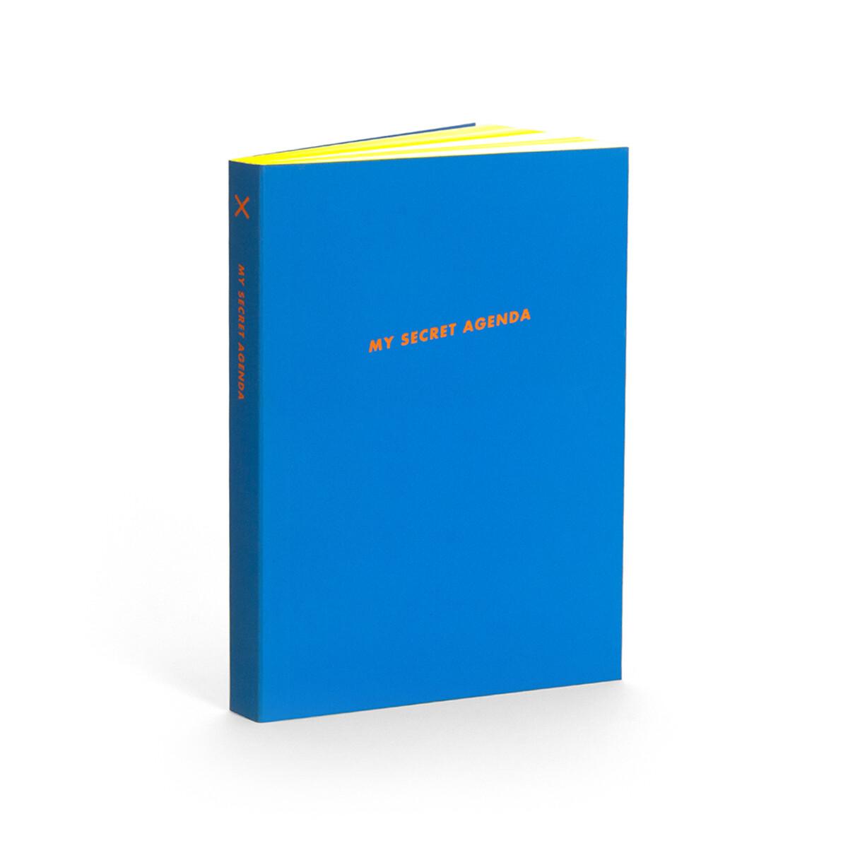 SALE: My Secret Agenda Journal - Seltzer - org. $14.99