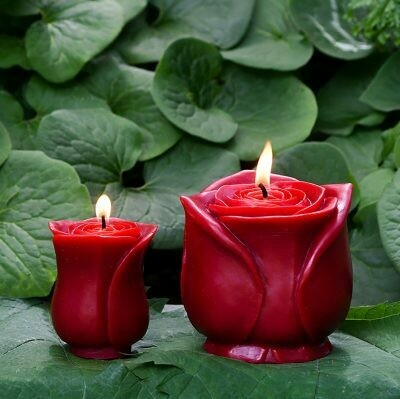 Beeswax Red Grande Rose Candle - Sunbeam