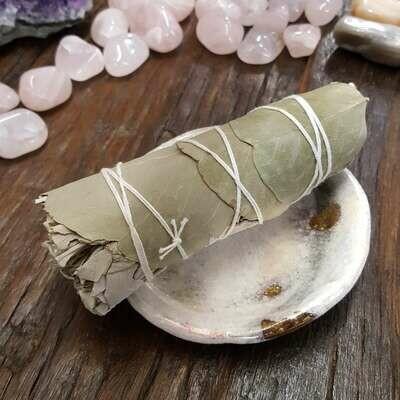 """Baby White Sage/Eucalyptus 4"""""""