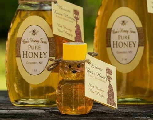 Little Honey Bear