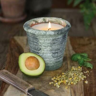 Chamomile & Avocado 12oz Herban Garden Candle