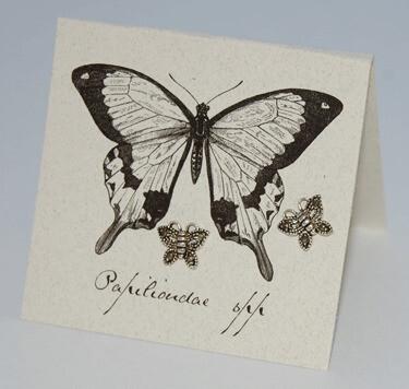 S&B Butterfly w/ Marcosite SS Post Earrings