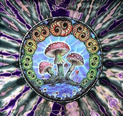 HL Mushroom 2K Dyed XLrg T-Shirt