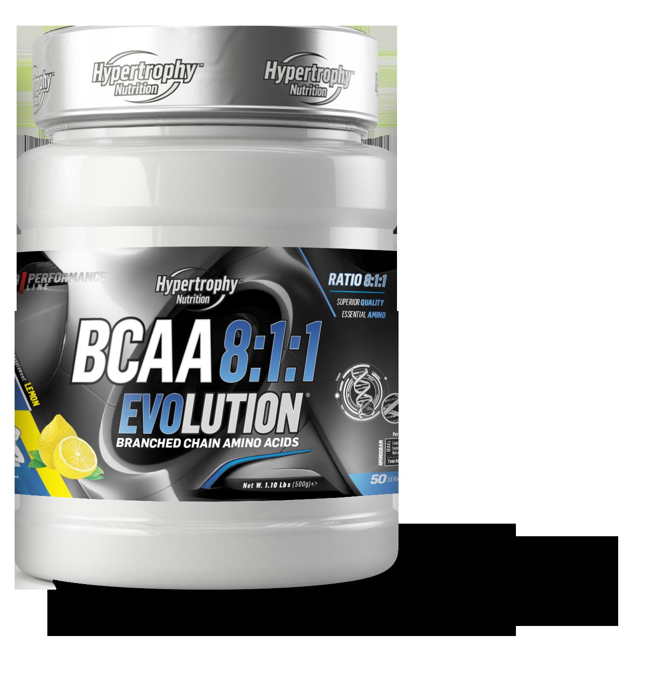 BCAA 8:1:1 / 500 Gram- Instant