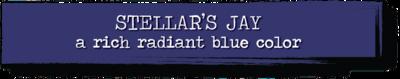 Chalk Paint - Stellar's Jay - 4 oz.