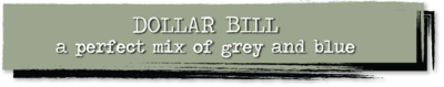 Chalk Paint - Dollar Bill - 4 oz.