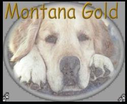 Montana Precious Gold's store