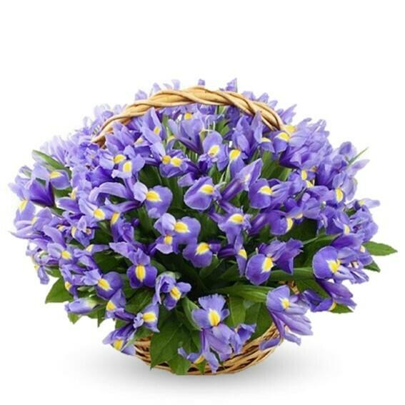 Liliana flores de Iris en canasta tejida