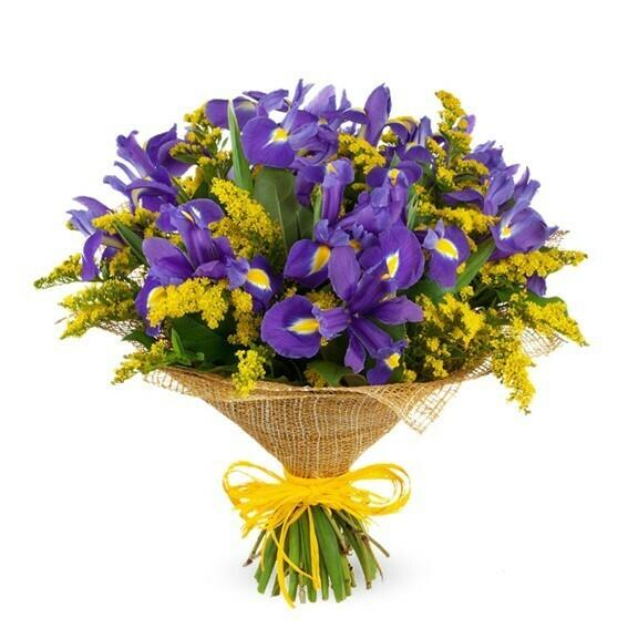 Belleza Lila Ramo de Iris en mano o florero