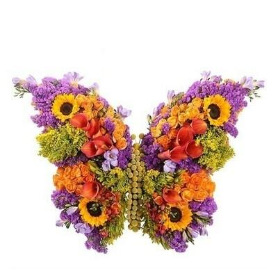 Nuestro Aniversario: Mariposa   Florerias en Lima   Giftyflor