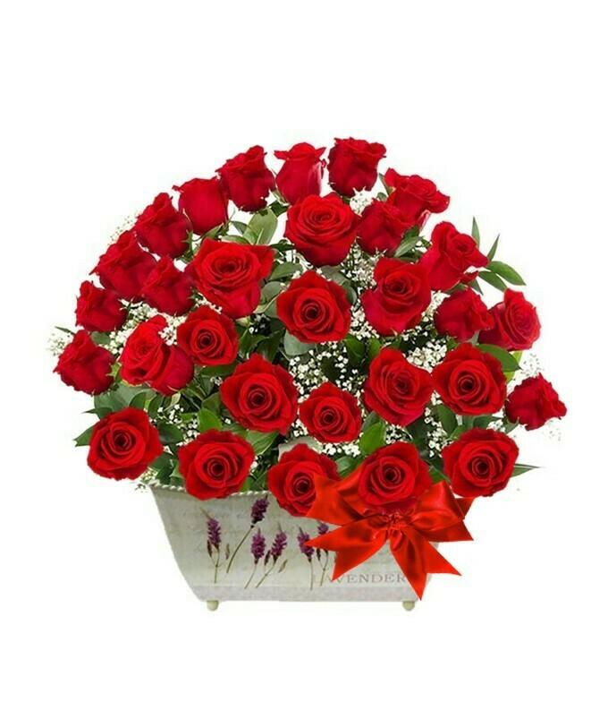 Aniversario Arreglo de 40 Rosas rojas en jardinera