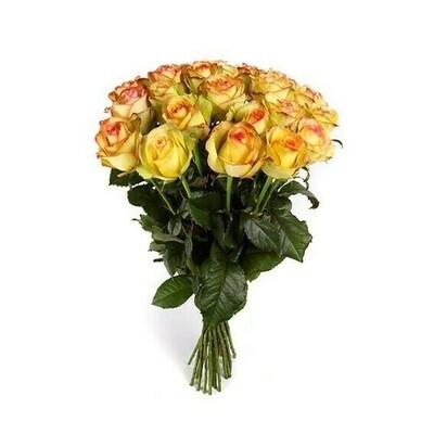 Rosas Amarillas | ramo de 20 rosas