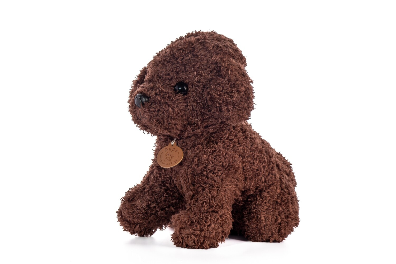 Perrito Marrón de rulos muñeco de peluche  en caja