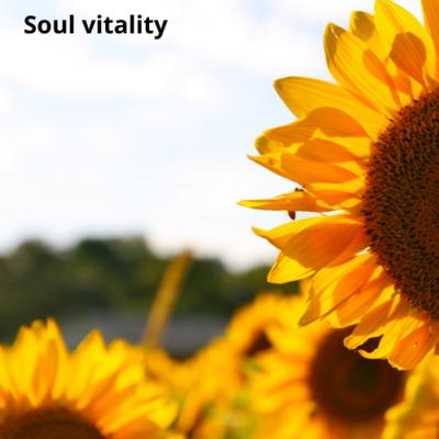 Soul Vitality