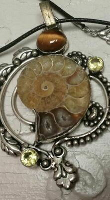 Ammunite Fossil pendent with tiger eye and citrine