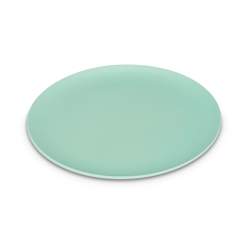 Small Mint Bamboo Plate
