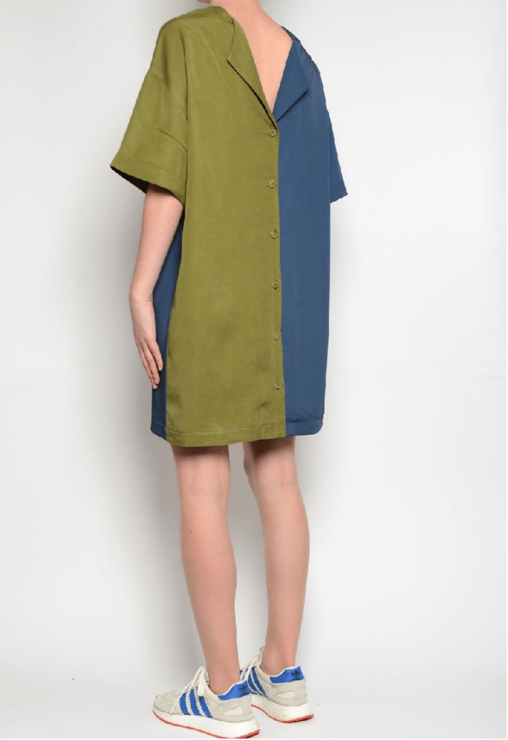 PAN ~ Colour Block Dress