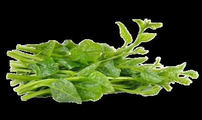 Alugbati (1/4kg)