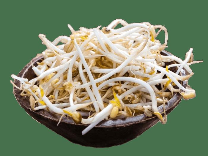 Munggo Sprout (1kg)