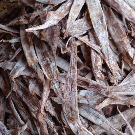 Dried Pusit (Tarorot) (100g)