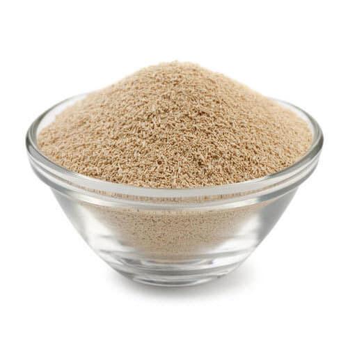 Yeast Powder (100g)