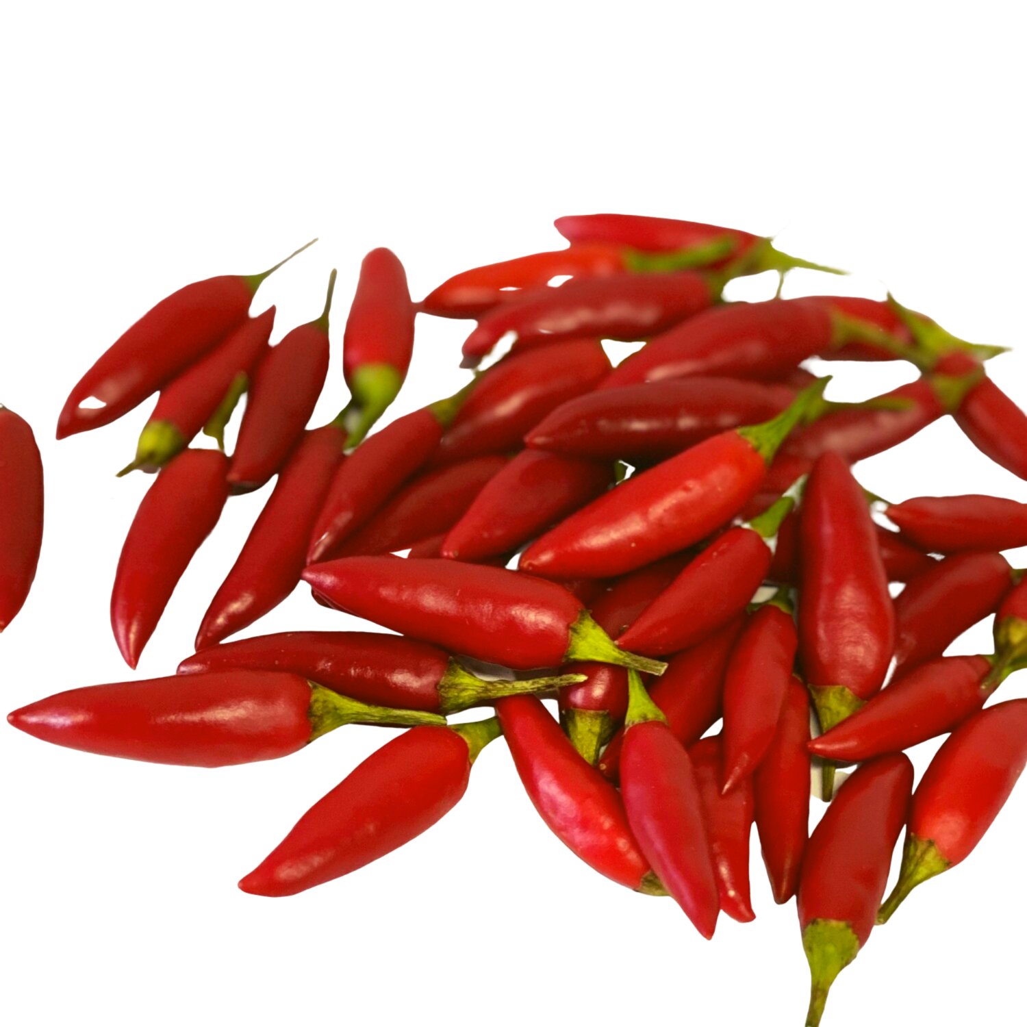 CHILLIES BIRDSEYE - 100G