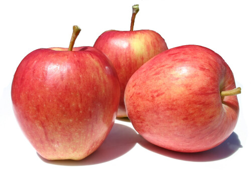 New Season's APPLES ROYAL GALA (EACH)